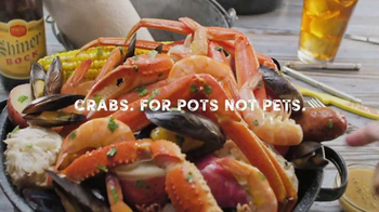 Joe's Crab Shack Texas Steampot TV Spot, 'Crabs: For Pots Not Pets' - Thumbnail 6