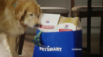PetSmart TV Spot, 'Refueling Your Friends' Song by Queen - Thumbnail 1