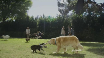 PetSmart TV Spot, 'Refueling Your Friends' Song by Queen - Thumbnail 4