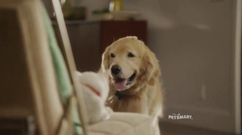 PetSmart TV Spot, 'Refueling Your Friends' Song by Queen - Thumbnail 5