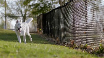 Purina Dog Chow Natural TV Spot, 'Barbara' - Thumbnail 3