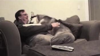 PETCO TV Spot, 'Cohabitants' - Thumbnail 2