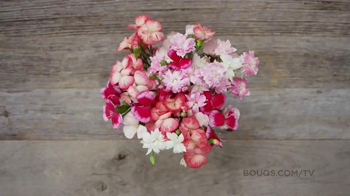 The Bouqs Company TV Spot, 'Mother's Day Flowers: We Got You' - Thumbnail 5