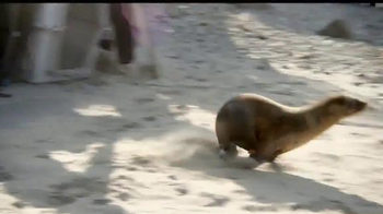 Dawn Ultra TV Spot, 'Rescatistas de la vida silvestre' [Spanish] - Thumbnail 6