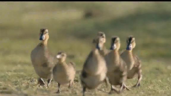Dawn Ultra TV Spot, 'Rescatistas de la vida silvestre' [Spanish] - Thumbnail 7
