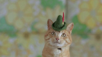 GoDaddy TV Spot, 'Cats With Hats' - Thumbnail 4