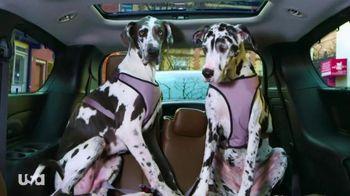 2017 Chrysler Pacifica TV Spot, 'The Secret Life of Pets' ft. Cat Greenleaf