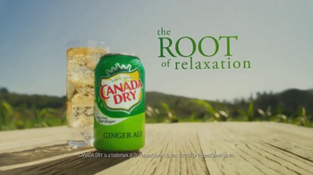 Canada Dry Ginger Ale TV Spot, 'The Root of Relaxation' - Thumbnail 5