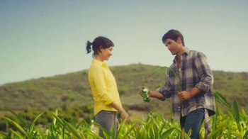 Canada Dry Ginger Ale TV Spot, 'The Root of Relaxation' - Thumbnail 3