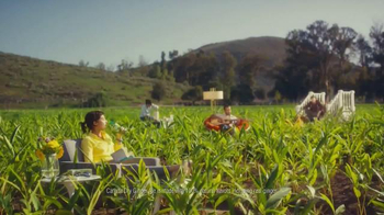 Canada Dry Ginger Ale TV Spot, 'The Root of Relaxation' - Thumbnail 4