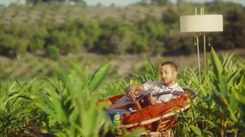 Canada Dry Ginger Ale TV Spot, 'The Root of Relaxation'