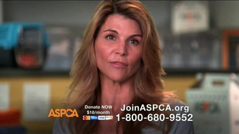 ASPCA TV Spot, 'A Kind and Gentle Touch' Featuring Lori Loughlin - Thumbnail 4