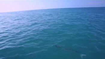 The Florida Keys & Key West TV Spot, 'Ancient Form of Hide and Seek' - Thumbnail 8