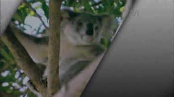 Nationwide Insurance TV Spot, 'Devotion' Featuring Jack Hanna - Thumbnail 1