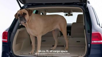 Volkswagen TV Spot, 'Drivers With Dogs' - 51 commercial airings