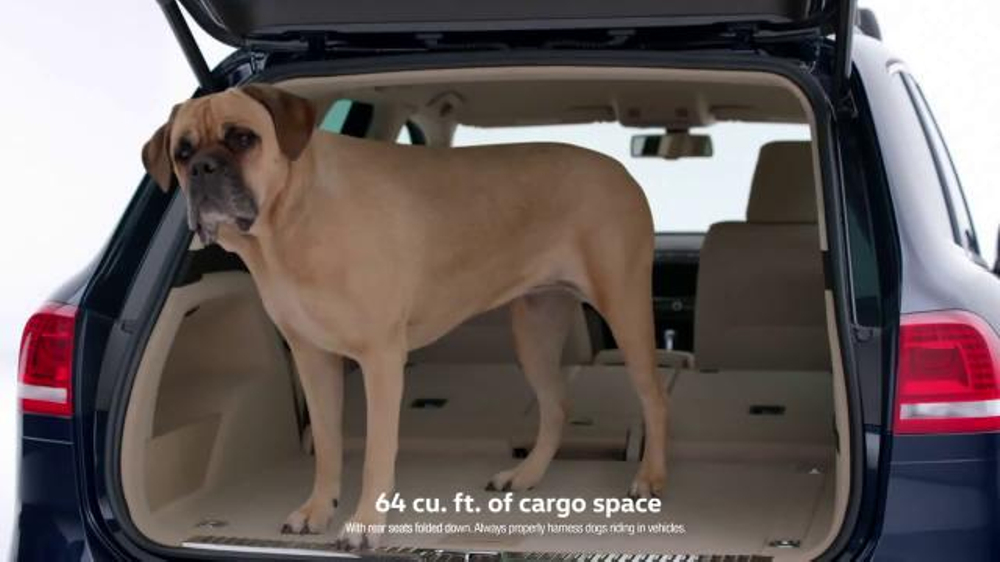 Range Rover Discovery Sport >> Volkswagen TV Commercial, 'Drivers With Dogs' - iSpot.tv