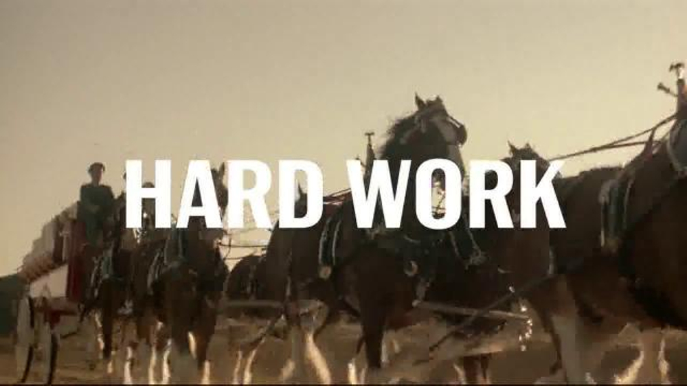 Budweiser tv commercial hard work this is what it tastes like budweiser tv commercial hard work this is what it tastes like ispot aloadofball Gallery