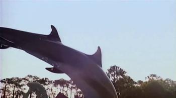 Florida's Paradise Coast TV Spot, 'Florida's Sports Paradise' - Thumbnail 5