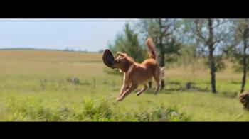 A Dog's Purpose - Alternate Trailer 6