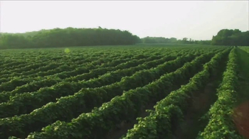 Welch's Grape Juice TV Spot, 'Something for Everyone' - Thumbnail 1