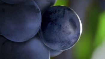 Welch's Grape Juice TV Spot, 'Something for Everyone' - Thumbnail 4