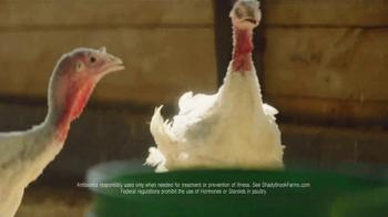 Shady Brook Farms TV Spot, 'A Simple Life' - Thumbnail 5