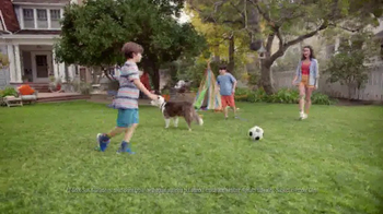 Scotts EZ Seed TV Spot, 'Bare Spots'