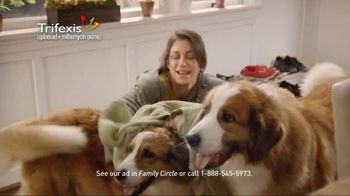 Trifexis TV Spot, 'Life With Three Dogs' - 177 commercial airings