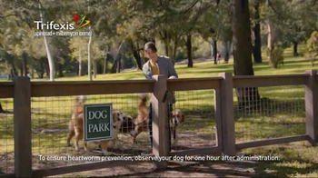 Trifexis TV Spot, 'Life With Three Dogs' - Thumbnail 4