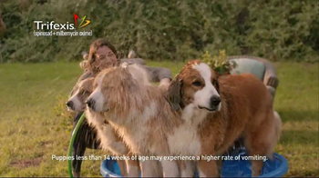 Trifexis TV Spot, 'Life With Three Dogs' - Thumbnail 5