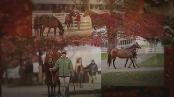 Keeneland November Breeding Stock Sale TV Spot, 'Thoroughbred Athletes' - 4 commercial airings