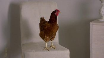FoodSafety.gov TV Spot, 'Food Safety Education: Separate Your Raw Meats' - Thumbnail 2