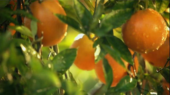 Simply Orange TV Spot, 'Plant Tour' Featuring Donald Sutherland - Thumbnail 3