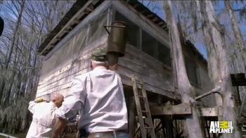 Texas Tourism TV Spot, 'Animal Planet: Wild Side' Featuring Pete Nelson - Thumbnail 7