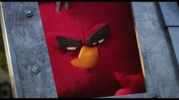 The Angry Birds Movie - Alternate Trailer 39