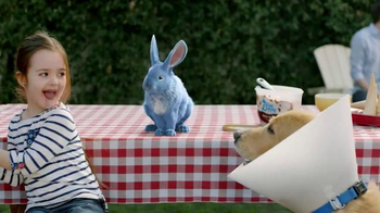 Blue Bunny Ice Cream TV Spot, 'The Dog in a Cone Can't Have a Cone' - Thumbnail 2