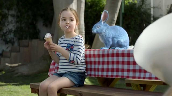 Blue Bunny Ice Cream TV Spot, 'The Dog in a Cone Can't Have a Cone' - Thumbnail 4