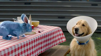 Blue Bunny Ice Cream TV Spot, 'The Dog in a Cone Can't Have a Cone' - Thumbnail 6