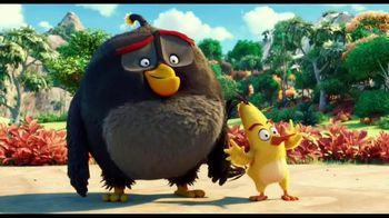 The Angry Birds Movie - Alternate Trailer 35