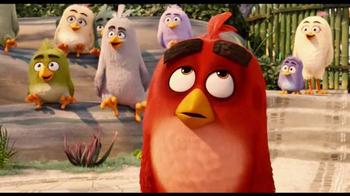 The Angry Birds Movie - Alternate Trailer 33