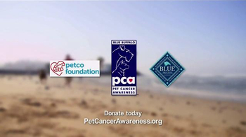 Pet Cancer Awareness TV Spot, 'The Little Things' - Thumbnail 8