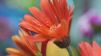 The Home Depot TV Spot, 'Evolving Gardens: Insect Killer' - Thumbnail 2