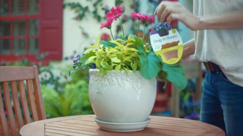 The Home Depot TV Spot, 'Evolving Gardens: Insect Killer' - Thumbnail 4