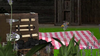 Outback Steakhouse TV Spot, 'Discovery Channel: Backyard BBQ' - Thumbnail 6