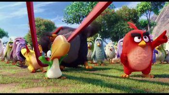 The Angry Birds Movie - Alternate Trailer 42