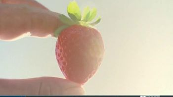 Save the Food TV Spot, 'Life of a Strawberry' - Thumbnail 2