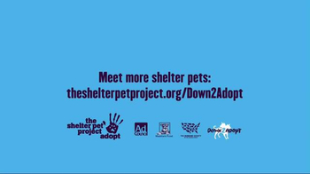 The Shelter Pet Project TV Spot, 'Bentley' - Thumbnail 10