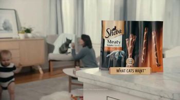 Sheba Meaty Tender Sticks TV Spot, 'What Cats Want' Song by REO Speedwagon - Thumbnail 5