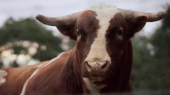 YETI Coolers TV Spot, 'Goliaths' - Thumbnail 5