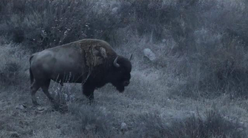 Civilware TV Spot, 'Bringing Down a Bison' - 157 commercial airings